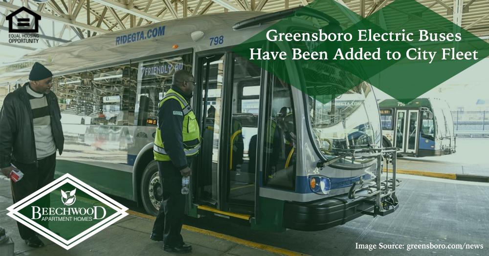 Greensboro electric buses