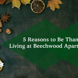 Thankful for Living at Beechwood Apartment Homes