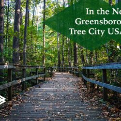 Greensboro's 28th Tree City USA Award