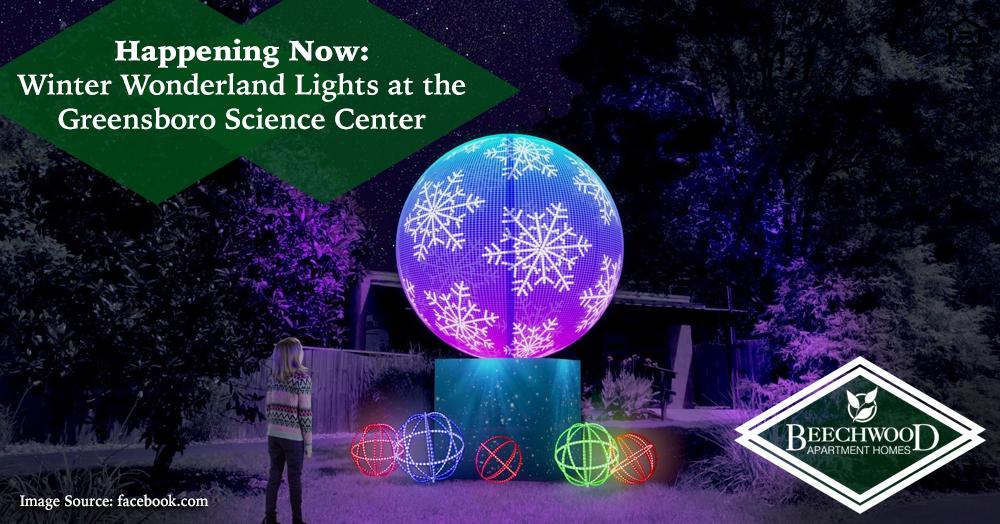 Winter Wonderland Lights at the Greensboro Science Center