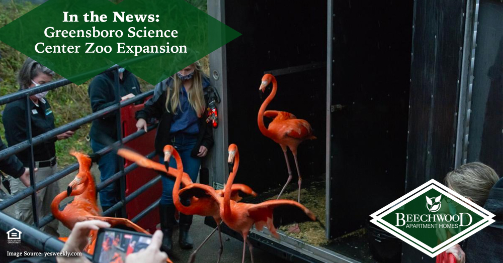 Greensboro Science Center Zoo Expansion