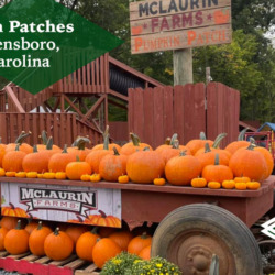 Pumpkin Patches Near Greensboro